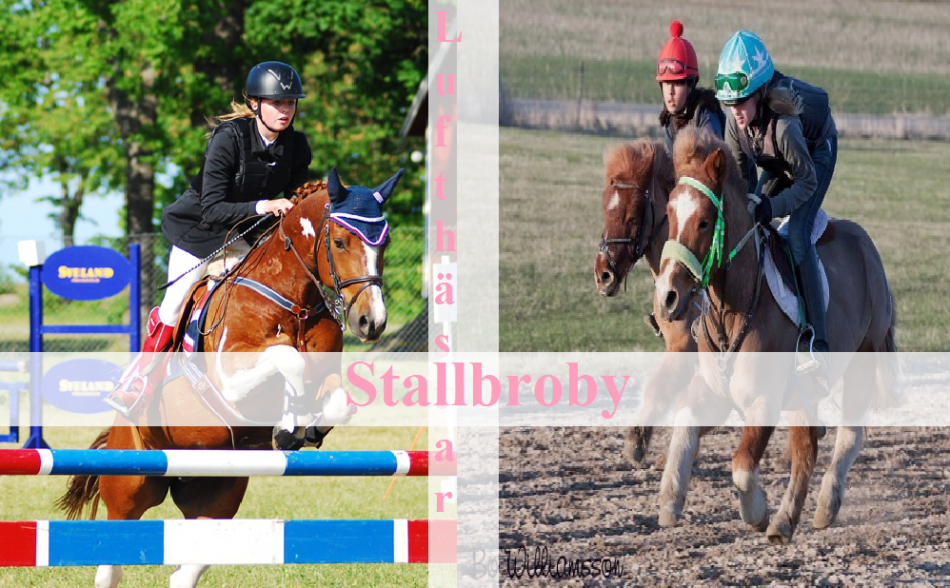 stallbroby